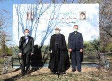 روحانی: حفظ و گسترش درختان و مراتع کشور به معنای امنیت غذایی و ملی است