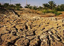 خشکسالی و بی نظمی /کشورهای خاورمیانه و شمال آفریقا خشکیدهاند